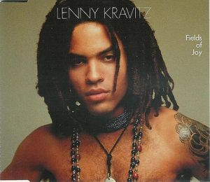 Lenny_Kravitz_Fields_of_Joy_cover